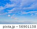 早朝の夏の青空 56901138