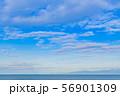 夏の青空と水平線 静岡県沼津市千本浜海岸 56901309