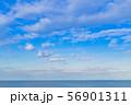 夏の青空と水平線 静岡県沼津市千本浜海岸 56901311