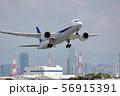 青空と飛行機 56915391