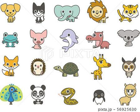 かわいい動物集 56925630