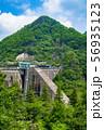 新緑の大倉ダム001 56935123