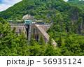 新緑の大倉ダム002 56935124