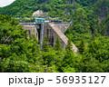 新緑の大倉ダム005 56935127