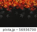 和を感じるイラスト(紅葉、和紙、黒色) 56936700