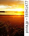 夕日に照らされる砂浜 56941477