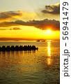 太陽に照らされて黄金に輝く海 56941479