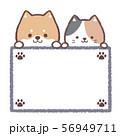 柴犬三毛猫案内板-足跡 56949711