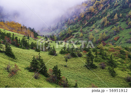 (群馬県)山田峠から望む、草津白根山の噴煙 56951912