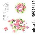 うさぎと桜 56958117