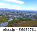 徳島平野〜ドローンで空撮(吉野川 左岸/徳島県上板町綾部) 56959781
