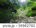 8月 嵐山町15嵐山渓谷と槻川 56962782
