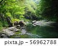 8月 嵐山町09嵐山渓谷と槻川 56962788