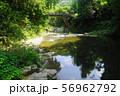 8月 嵐山町06嵐山渓谷と槻川 56962792