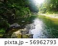 8月 嵐山町05嵐山渓谷と槻川 56962793