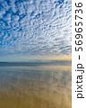 ケアンズの海岸 56965736