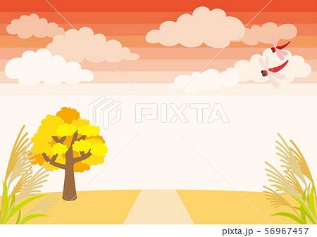 夕焼けの秋空と草原の風景【横】 56967457