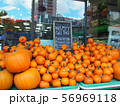 海外 スーパー パンプキン ハロウィン 56969118