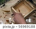 【浅草きんぎょ 金魚すくい】 56969188
