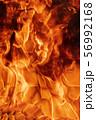 Blaze red fire natural background. Dangerous firestorm abstract texture 56992168