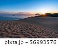 《鳥取県》鳥取砂丘の夜明け 56993576
