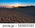 《鳥取県》鳥取砂丘の夜明け 56993585