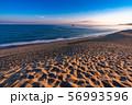 《鳥取県》鳥取砂丘の夜明け 56993596