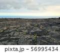 溶岩の大地 56995434