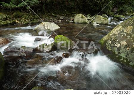 石の段差を流れる奥十曽渓谷の渓流 57003020