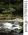 石の段差を流れる奥十曽渓谷の渓流 57003021