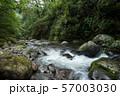 奥十曽渓谷の渓流 57003030