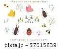 昆虫のイラスト 57015639
