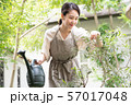 ジョウロで水やりをする若い女性 ガーデニング 57017048