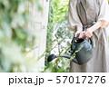 ガーデニング 趣味 水やり ジョウロを持つ若い日本人女性の手元 57017276