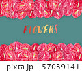 Pattern of red spadix flower on green background. 57039141