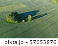 Aerial view of the large green field in spring season 57053876