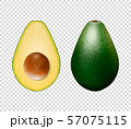 Vector 3d Realistic Whole and Half Avocado with Seed Closeup Isolated on Transparent Background 57075115