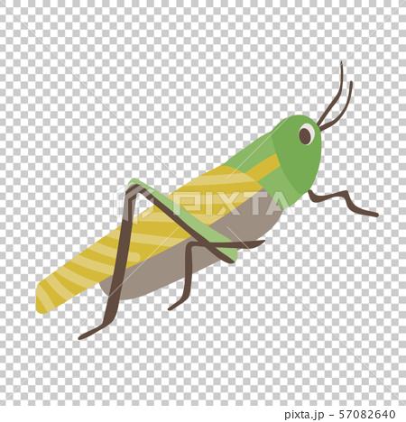 Locust 57082640
