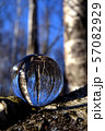 Transparent glass crystal ball in spring birch forest 57082929