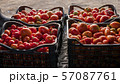 Boxes with tomatoes in the trunk of a car. Harvesting concept 57087761