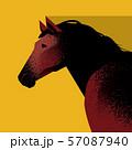馬 57087940