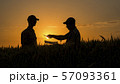 The farmer signs a contract on the field. Agribusiness deal 57093361