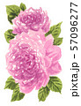 roses19903pix7 57096277
