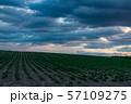 北海道・美瑛の丘 夕暮れ 57109275