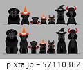 ハロウィン 犬 ボーダー 57110362
