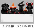 ハロウィン 犬 ホワイトボード 57110364