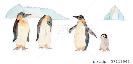 ペンギンと氷山 水彩 57115945