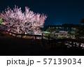偕楽園 水戸の梅まつり ライトアップ夜景 (茨城県水戸市) 2019年3月 57139034