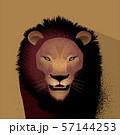 ライオン 57144253