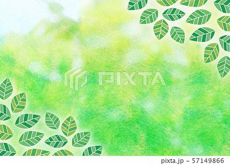 新緑 葉 水彩  57149866